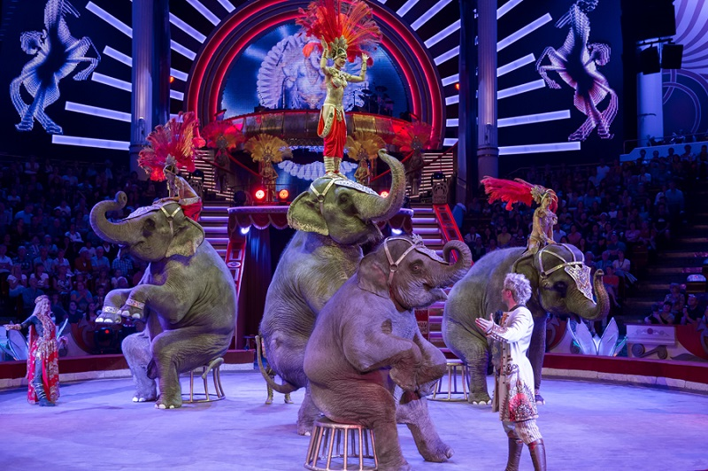 http://www.circus-astrahan.ru/